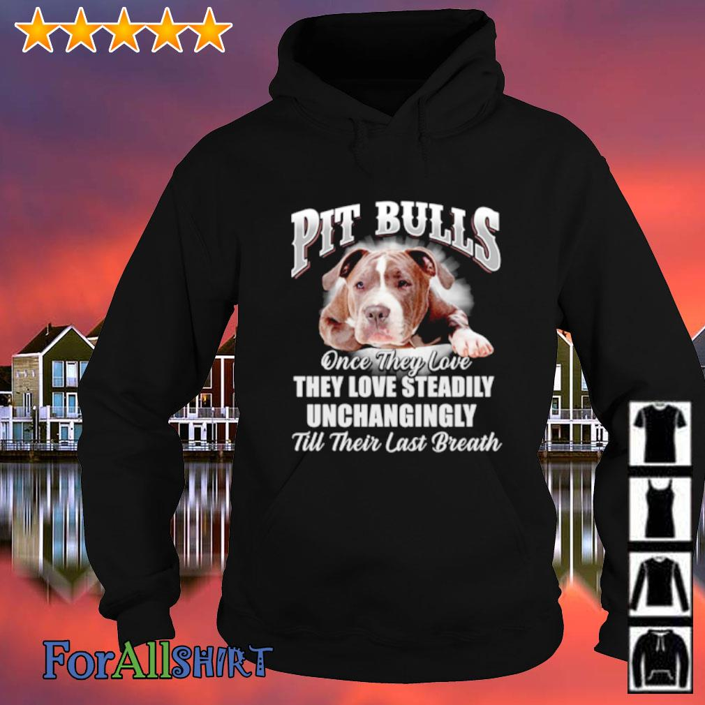 Pit bulls once they love they love steadily unchangingly till their last breath s hoodie